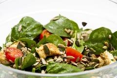 De Salade van de spinazie Royalty-vrije Stock Fotografie