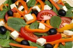 De salade van de spinazie Royalty-vrije Stock Foto