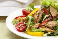 De Salade van de tonijn Stock Afbeelding