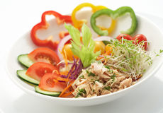 De salade van de tonijn stock foto's