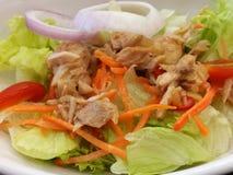 De Salade van de tonijn Stock Foto