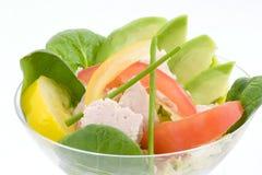 De salade van de tonijn en van de avocado Royalty-vrije Stock Afbeelding