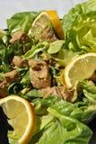 De salade van de tonijn met citroen Stock Foto's