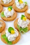 De salade van de tonijn met crackers Stock Fotografie