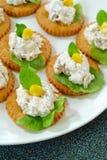 De salade van de tonijn met crackers Royalty-vrije Stock Foto