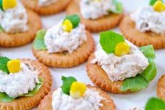 De salade van de tonijn met crackers Stock Foto's