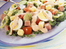 De salade van de verse chef-kok Royalty-vrije Stock Foto's