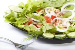 De salade van de verse Groente Royalty-vrije Stock Afbeeldingen
