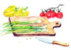 De Salade van de waterverfillustratie het Koken Stock Foto's