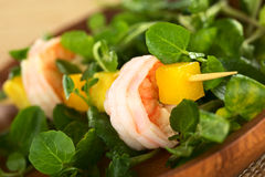 De Salade van de Witte waterkers van de Avocado van de Mango van garnalen stock foto