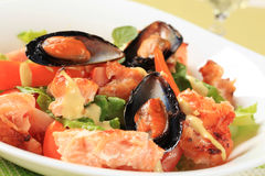 De salade van de zalm en van de mossel royalty-vrije stock foto
