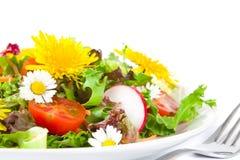 De salade van de zomer Royalty-vrije Stock Afbeelding