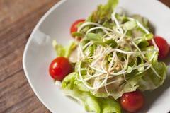 De salade van de zonnebloemspruit Stock Foto's