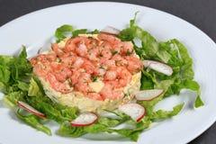 De salade van garnalen stock afbeelding