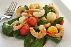 De salade van garnalen en van de meloen Royalty-vrije Stock Foto's