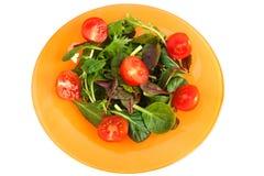 De salade van Gren Stock Fotografie