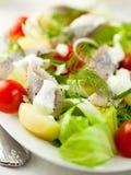 De Salade van haringen Stock Fotografie