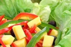 De salade van het dieet stock foto