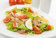 De salade van het ei en van de tonijn Stock Afbeeldingen