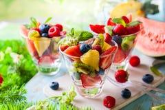 De salade van het fruit en van de bes stock foto