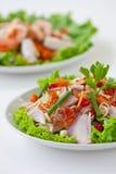 De salade van het kruid (Thais voedsel) Stock Foto