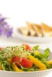 De salade van het ontbijt Royalty-vrije Stock Afbeeldingen