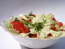 De salade van het seizoen Royalty-vrije Stock Afbeeldingen