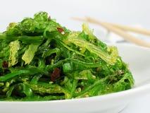 De Salade van het zeewier Stock Foto