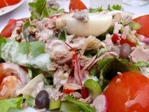 De salade van Niçoise Stock Foto