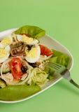 De Salade van Nicoise Royalty-vrije Stock Afbeeldingen