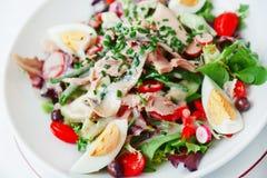 De salade van Nicoise Royalty-vrije Stock Afbeelding