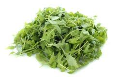 De salade van Rucola Stock Foto