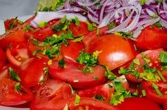 De salade van de tomaat en van de ui stock afbeelding