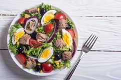 De salade van de tonijn met tomaten Royalty-vrije Stock Fotografie