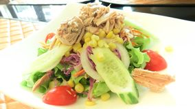 De salade van de tonijn met verse groenten stock foto