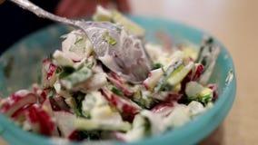 De salade van verse komkommers, radijzen en dille kruidde met zure room in een plastic plaat