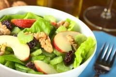 De Salade van Waldorf Stock Afbeeldingen