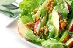 De Salade van Waldorf Royalty-vrije Stock Fotografie