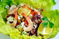 De Salade van zeevruchten op sla Royalty-vrije Stock Afbeelding