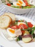 De salademaaltijd van Nicoise Stock Afbeelding