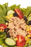 De salades van de tonijn royalty-vrije stock afbeeldingen