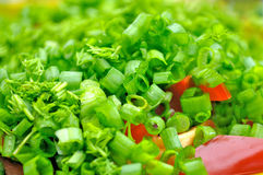 De Salades van de zomer royalty-vrije stock foto