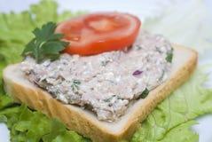 De saladesandwich van de tonijn royalty-vrije stock afbeeldingen