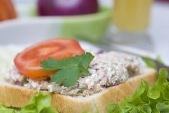 De saladesandwich van de tonijn Stock Foto