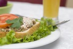 De saladesandwich van de tonijn Stock Fotografie