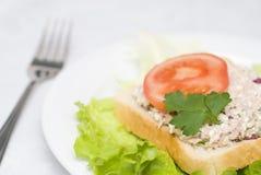 De saladesandwich van de tonijn Royalty-vrije Stock Foto's