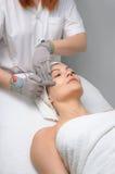 De salonreeks van de schoonheid. gezichts massage Royalty-vrije Stock Afbeeldingen