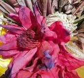 De samenstelling bloemen met verfraait element royalty-vrije stock afbeeldingen