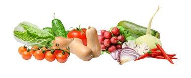 De samenstelling met een grote verscheidenheid van verschillende groenten op een wit isoleerde achtergrond stock foto