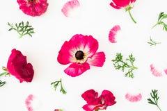 De samenstelling met tulpen bloeit, koekjes en kop van koffie op gele achtergrond Vlak leg, hoogste mening Royalty-vrije Stock Foto's